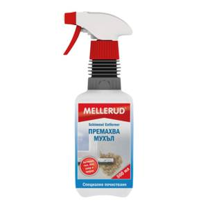 почистване на плесен, гъбички и мухъл