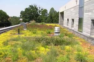хидроизолация за зелени покриви